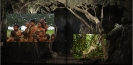 Mystische Amazonas